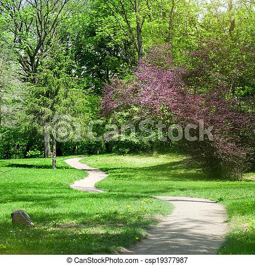 printemps, parc, vert - csp19377987