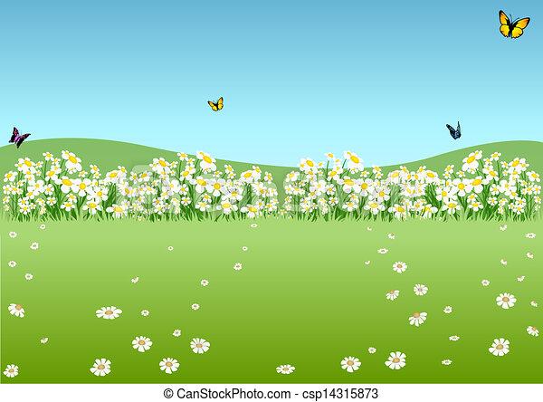 printemps, pré - csp14315873