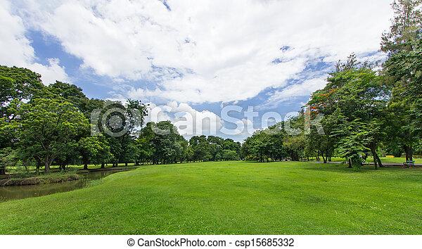 public, ciel bleu, arbres, parc, pelouse verte - csp15685332