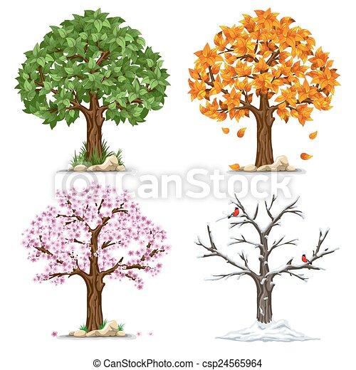 quatre saisons - csp24565964