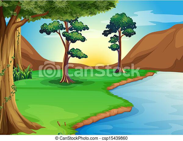 rivière, forêt - csp15439860