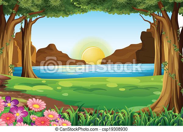 rivière, forêt - csp19308930