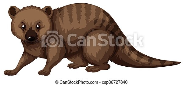 sauvage, brun, fourrure, animal - csp36727840