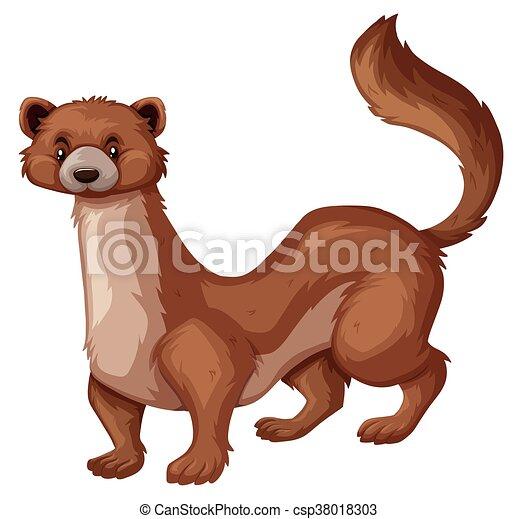 sauvage, brun, fourrure, mangouste - csp38018303