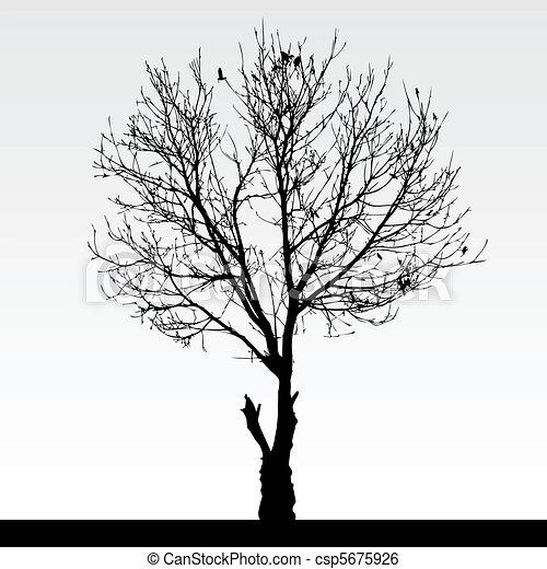sec, arbre, mort - csp5675926