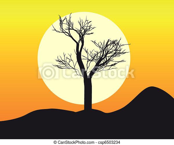 silhouette, arbre - csp6503234