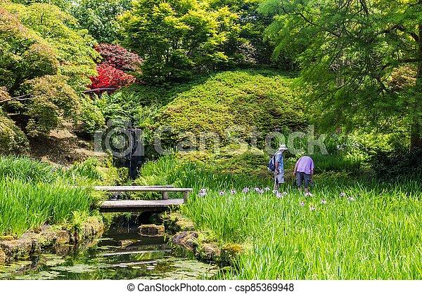 sussex, château, printemps, pendant, britannique, angleterre, coloré, jardin - csp85369948