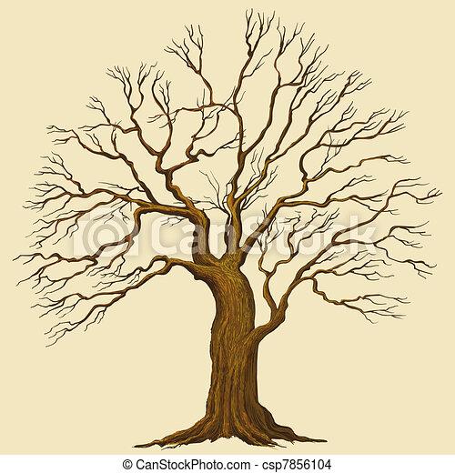 vecteur, arbre - csp7856104