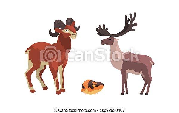 vecteur, lemming, animaux, arctique, ensemble, polaire, renne, illustration, dessin animé, chèvre montagne - csp92630407