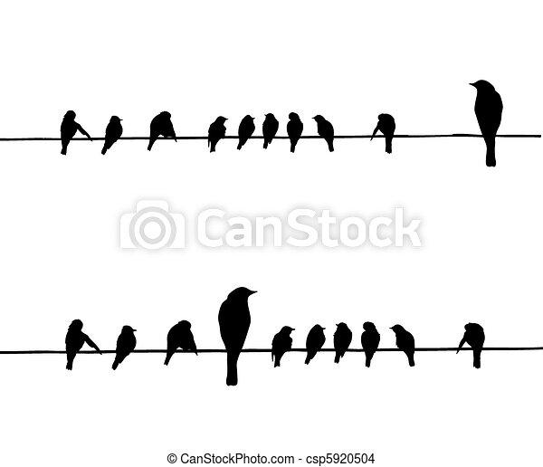 vecteur, silhouettes, fil, oiseaux - csp5920504