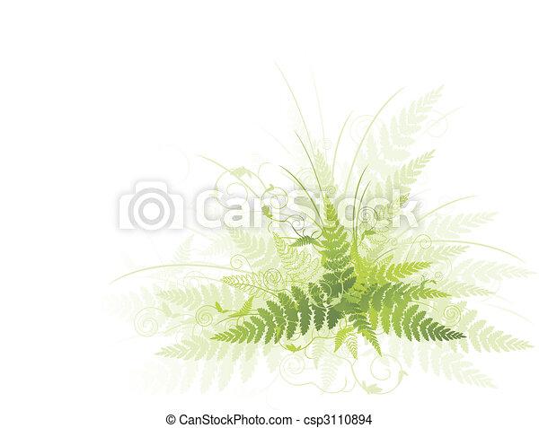vert, fougère - csp3110894