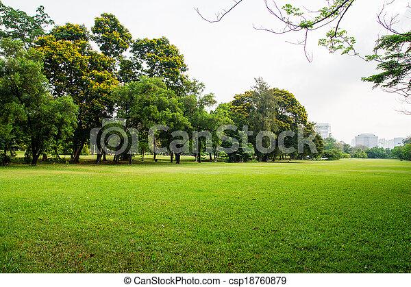 ville, grand, parc, champ, herbe verte - csp18760879