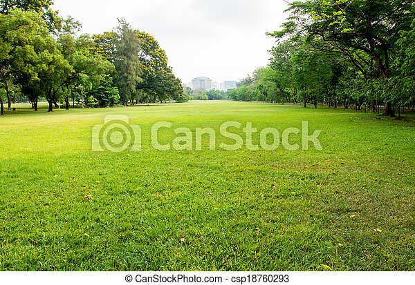 ville, grand, parc, champ, herbe verte - csp18760293