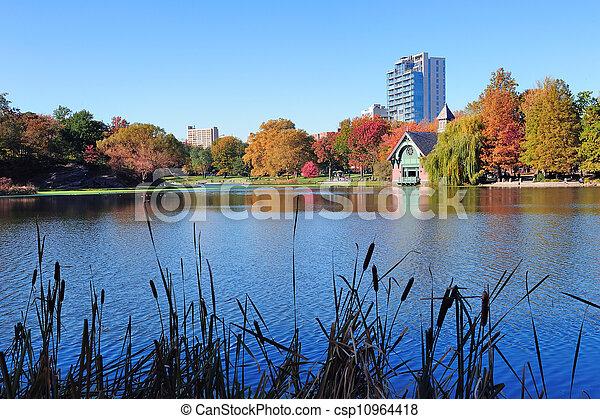 ville, parc central, automne, york, nouveau - csp10964418