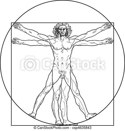vitruvian, (outline, version), homme - csp4635843